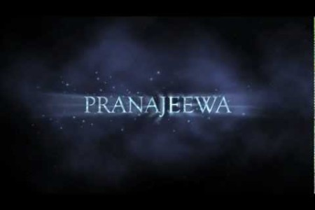 Pranajeewa Miracle Oil